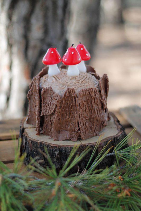 camping acampada cabañas tipi fiesta bosque scout escout campamento aniversario cumpleaños birthday