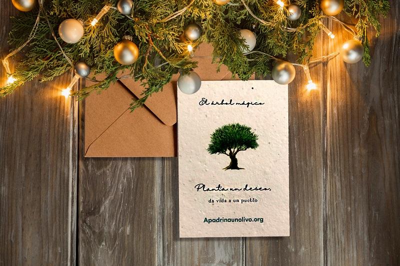 regalo boda solidario blog apadrinar olivo